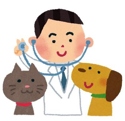 収入や地位を求めるなら獣医になっちゃいけません